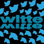 שיווק בטוויטר – כי עדיף ציפור אחת ביד מאשר שתיים על העץ.